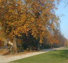 Sortie d'automne 2007